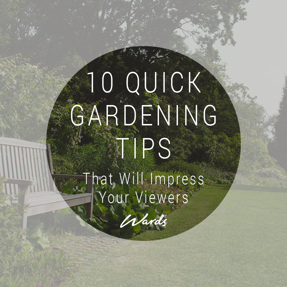blog_10_quick_gardening_tips_wd